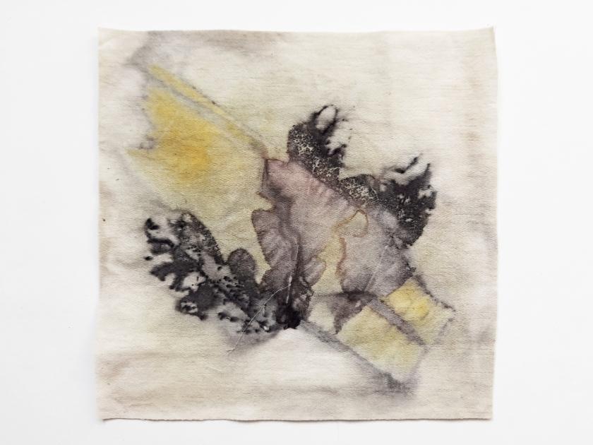 Come Along, botanical contact print on cotton sheet,17 x 17 cm, 2020