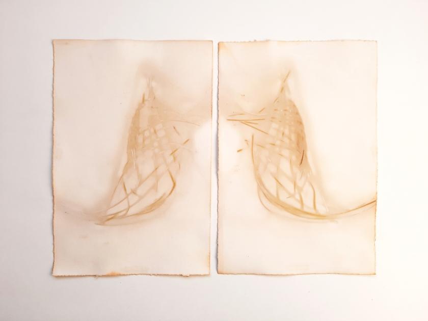 Woven Shadows, eucalyptus bark on paper, 18 x 56cm, 2020